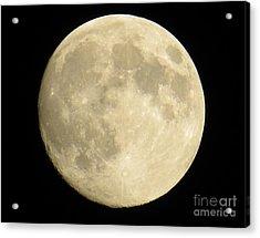 September Moon Acrylic Print by Judy Via-Wolff