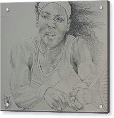 Serena Williams Acrylic Print by DMo Herr