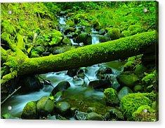 Serenity On The Rocks Acrylic Print by Jeff Swan