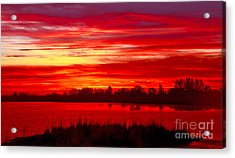 Shades Of Red Acrylic Print by Robert Bales