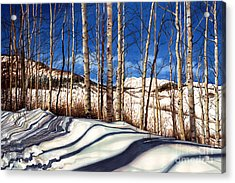 Snow Scenes In Watercolors Acrylic Print featuring the painting Shadow Dance by Barbara Jewell