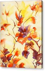 Shadow Leaves Acrylic Print by Summer Celeste