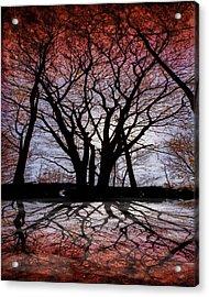Shadow Secrets Acrylic Print by Bob Orsillo
