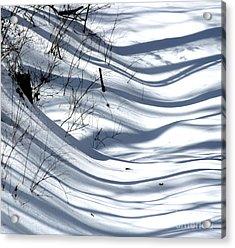 Shadows Reach Acrylic Print by Fred  Sheridan