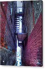 Shared Escape Acrylic Print by MJ Olsen