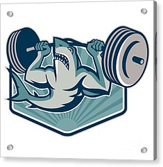 Shark Weightlifter Lifting Weights Mascot Acrylic Print by Aloysius Patrimonio