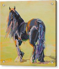 Shasta Solomon Acrylic Print by Kimberly Santini
