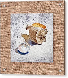 She Sells Sea Shells Decorative Collage Acrylic Print by Irina Sztukowski