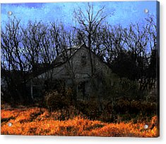 Shed In Brush On Hwy 49 North Of Waupaca Acrylic Print by David Blank
