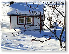Shed In Winter Acrylic Print by Sophie Vigneault