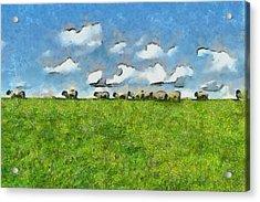 Sheep Herd Acrylic Print by Ayse Deniz