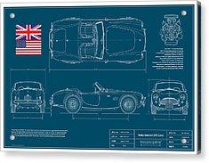 Shelby-american 289 Cobra Acrylic Print by Douglas Switzer