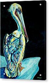 Shelter Island Pelican Acrylic Print by Derrick Higgins