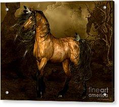 Shikoba Choctaw Horse Acrylic Print by Shanina Conway