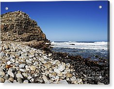 Shore At Cape Of Good Hope Acrylic Print by Sami Sarkis