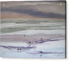 Shoreline Birds II Acrylic Print by Julianne Felton