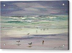 Shoreline Birds IIi Acrylic Print by Julianne Felton