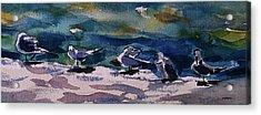 Shoreline Birds Iv Acrylic Print by Julianne Felton