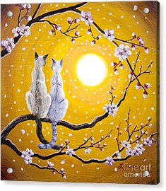 Siamese Cats Nestled In Golden Sakura Acrylic Print by Laura Iverson