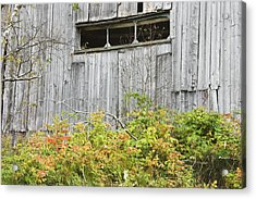 Side Of Barn In Fall Acrylic Print by Keith Webber Jr