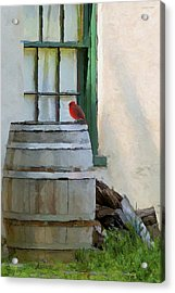 Signs Of Spring Acrylic Print by Ron Jones