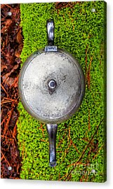 Silver Teapot In The Forest Acrylic Print by Edward Fielding