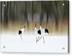 Sing A Song Of Love Acrylic Print by Ikuo Iga
