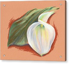 Single Calla Lily And Leaf Acrylic Print by MM Anderson