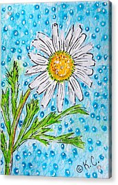 Single Summer Daisy Acrylic Print by Kathy Marrs Chandler