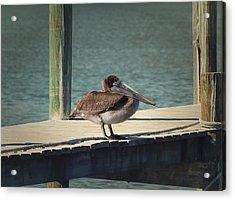 Sitting On The Dock Of The Bay Acrylic Print by Kim Hojnacki