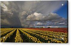 Skagit Valley Storm Acrylic Print by Mike Reid