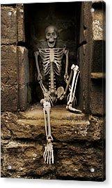 Skeleton Acrylic Print by Amanda And Christopher Elwell