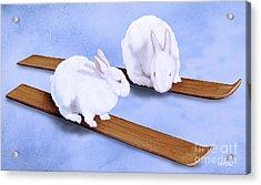 Ski Bunnies... Acrylic Print by Will Bullas