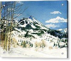 Skiers Paradise Acrylic Print by Barbara Jewell
