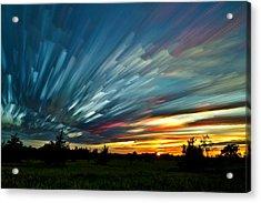 Sky Feathers Acrylic Print by Matt Molloy