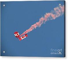 Skydivers #01 Acrylic Print by Ausra Huntington nee Paulauskaite