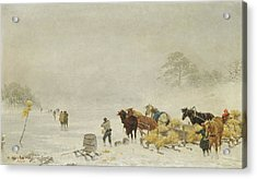 Sledges On The Ice Acrylic Print by Arthur Nikutowski