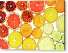Slices Of Citrus Fruit Acrylic Print by Cordelia Molloy