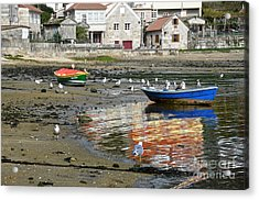 Small Boats And Seagulls In Galicia Acrylic Print by RicardMN Photography