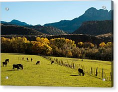 Smithsonian Butte And Two Feathers Ranch Early Fall On The Virgin River Rockville Utah Acrylic Print by Robert Ford