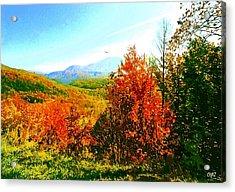 Smoky Mountain Autumn Acrylic Print by CHAZ Daugherty