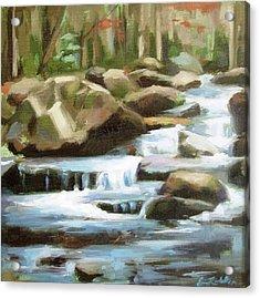 Smoky Mountain Stream Acrylic Print by Erin Rickelton
