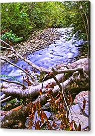 Smoky Mountain Stream Two Acrylic Print by Frozen in Time Fine Art Photography