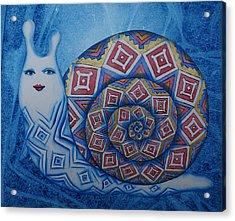 Snail Acrylic Print by Khromykh Natalia