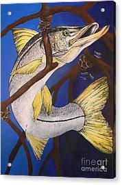 Snook Painting Acrylic Print by Lisa Bentley