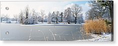 Snow Covered Trees Near A Lake, Lake Acrylic Print by Panoramic Images