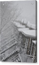 Snow Flake Focus Acrylic Print by Frederico Borges