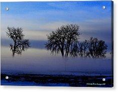 Snow Fog Acrylic Print by Rebecca Adams