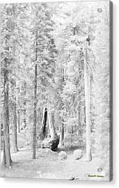 Snow Impressions Acrylic Print by Angela Stanton