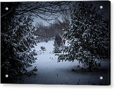 Snow In The Meadow Acrylic Print by Cheryl Swift
